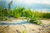 Símbolo del ambientalismo | Foto de stock