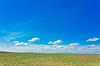 Green field | Stock Foto