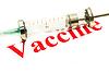 Photo 300 DPI: Swine FLU H1N1 vaccination - syringe and red alert