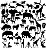 Vector clipart: set of african and tropical animals