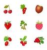 Vector clipart: set of berries