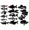Vector clipart: big set of aquarian fish