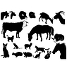 Vector clipart: Set of silhouettes of domestic animals