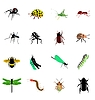 Vector clipart: the set of different kinds of insects and spiders