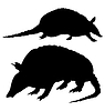 Vector clipart: set of silhouettes of armadillo
