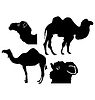 Vector clipart: set of silhouettes of camel