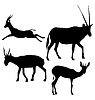 Vector clipart: set of silhouettes of gazelle