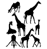 Vector clipart: set of silhouettes of giraffe