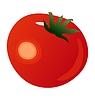 Vector clipart: tomato