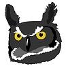 Owl | Stock Vector Graphics