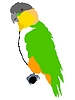 Vector clipart: Short-tailed Parrot