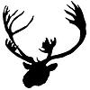驯鹿 | 向量插图