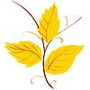 Vektor Cliparts: Gelbe Blätter