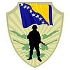 Vector clipart: Army of Bosnia and Herzegovina