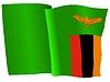 Vector clipart: waving flag of Zambia
