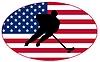 Векторный клипарт: Хоккей цветов США