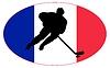 Векторный клипарт: Хоккей цвета Франции