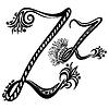 Векторный клипарт: Письмо Z Z