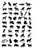 Векторный клипарт: Животное