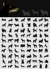 Vector clipart: Collection of dogs