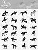 Векторный клипарт: Коллекция лошадей