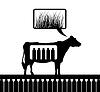 Векторный клипарт: Cow