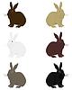 Векторный клипарт: Rabbit