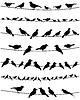 Векторный клипарт: Птица на wire