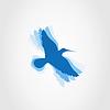 Векторный клипарт: Птичка
