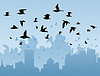 Vector clipart: Birds over city