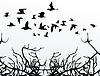 Vector clipart: Birds over wood