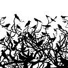 Векторный клипарт: Птицы над wood