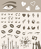 Vector clipart: Body parts