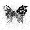 Vector clipart: Art butterfly
