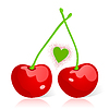 Vector clipart: Cherry