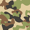 Vector clipart: Camouflage