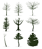 Vector clipart: Trees icon