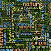 Vector clipart: Nature