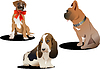 Vector clipart: Three cute dogs.