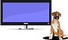 Screen of Plasma or LCD TV set and sitting dog