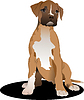 Vector clipart: Sitting puppy boxer.