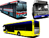 Vector clipart: Three City buses. Coach. for designers