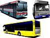 Vektor Cliparts: Drei Stadtbusse. Coach. für Designer