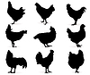 Vector clipart: Hens