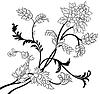 Vector clipart: Flower elements