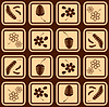 Vector clipart: floral icons