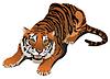 Рычащий тигр | Векторный клипарт