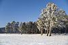 ID 3302667 | Winter landscape | High resolution stock photo | CLIPARTO