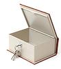 空保险箱 | 免版税照片