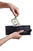 Фото 300 DPI: ручной тянуть доллар кошелек